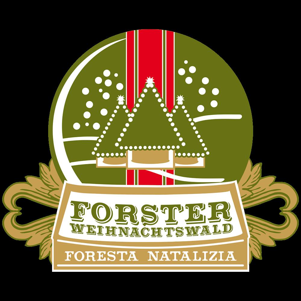 Forster – Weihnachtswald